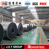 popular prepainted cold rolled steel coil 25-35 paint coating